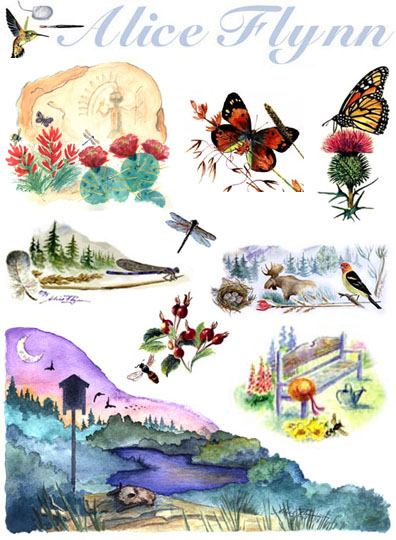 Alice Flynn watercolor illustrations
